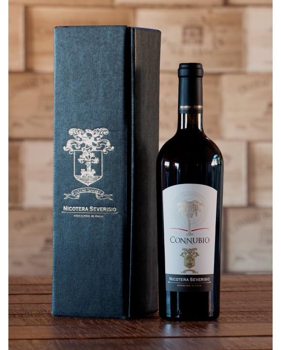 Connubio Vino Rosso Indicazione Geografica Tipica Calabria Greco Nero e Merlot